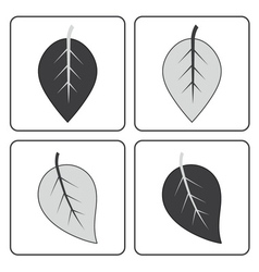 Gray leaf set vector