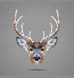 Deer low poly portrait vector