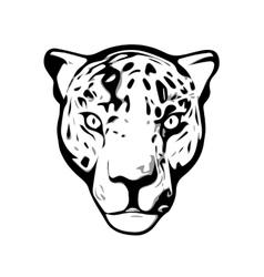 Head of jaguar vector