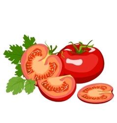 Tomato Healthy lifestile vector image
