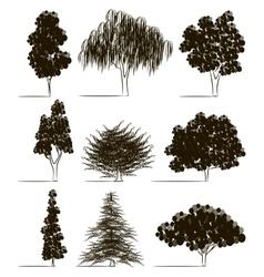 Trees sketch set vector