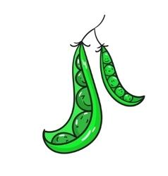 Vegetable peas vector