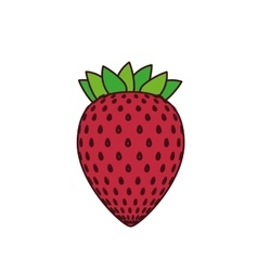 Delicious strawberry fruit isolated icon vector