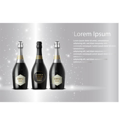 Three champagne wine bottles on sparkling vector