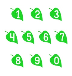 A set of numbers on the leaves vector image