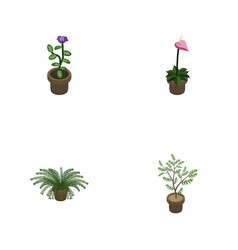 isometric plant set of grower plant flower and vector image vector image