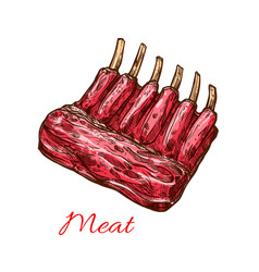 meat ribs of pork beef or lamb isolated sketch vector image