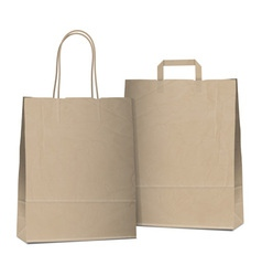 Two bags vector image