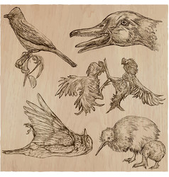 Birds animals around the world - an hand drawn vector