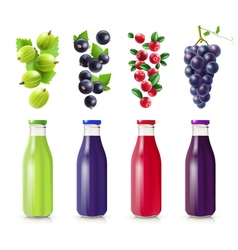 Realistic bottles with berry juice set vector