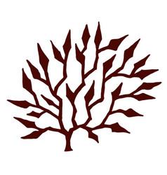 seaweed stylized vector image vector image
