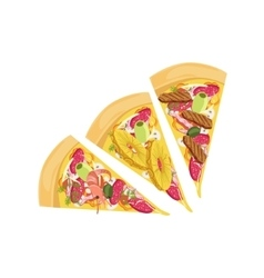 Three Different Pizza Slices Set vector image vector image