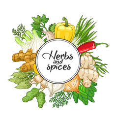 Vegetable round design with spices vector
