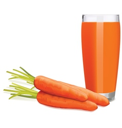 Carrots juice2 vector