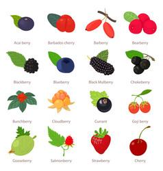 Berries icons set cartoon style vector