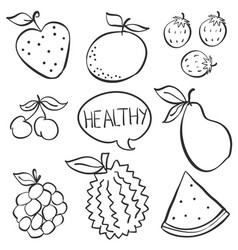 Doodle of fruit various hand draw vector