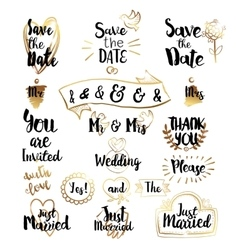 Golden Elements for Save the date vector image