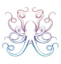colorful octopus sketch vector image