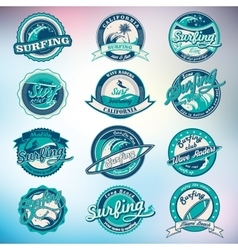 Summer surfing labels badges emblems and vector