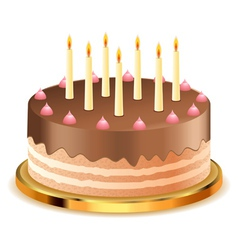 Chocolate cake with candles2 vector image
