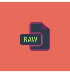 Raw image file extension icon vector