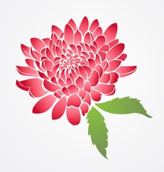 Isolated red chinese flower vector
