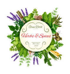Fresh herbs and spices round label for food design vector