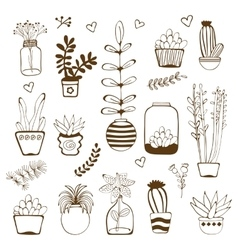 Big hand drawn set of house plants vector image vector image