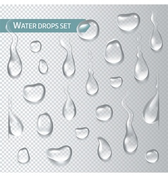 Droplets of water on a transparent background vector image