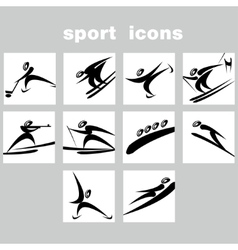 Set of winter sport icons vector image