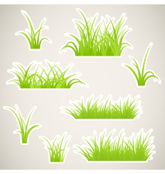 grass paper vector image