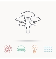 Pine tree icon forest wood sign vector