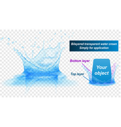 double layer water splash crown with reflection vector image vector image