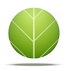 Leaves round Icon vector image vector image