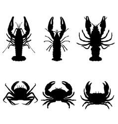 crawfish and crab vector image