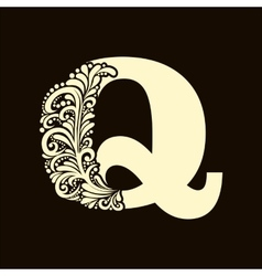 Elegant capital letter q in the style baroque vector