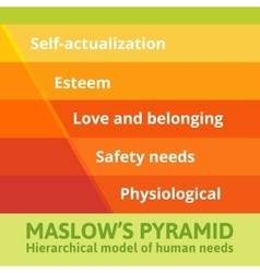 Maslow pyramid of needs vector image vector image