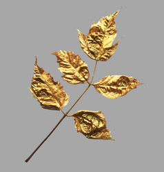 Realistic trendy gold painted leaves for vector