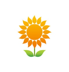 Sunflower-380x400 vector image