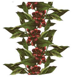 hand drawn coffee tree seamless border vector image