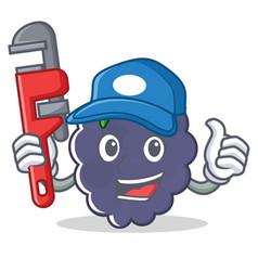 Plumber blackberry character cartoon style vector