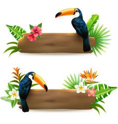Toucan 2 tropical rainforest banners vector