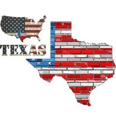 USA state of Texas on a brick wall vector image vector image