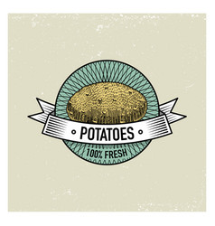 Potato vintage set of labels emblems or logo for vector