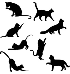 Cats collection - silhouette vector