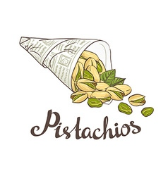 Bundle of newsprint with roasted pistachio nuts vector