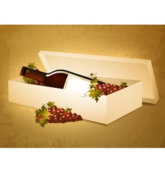 red wine bottle in box vector image