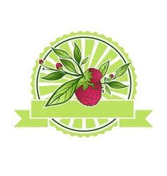 Raspberry emblem vector