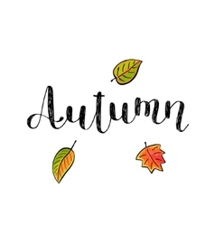 Autumn Brush lettering vector image vector image