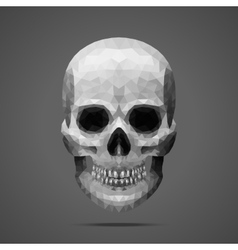 Polygonal gray skull Side light vector image vector image